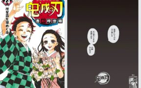 Demon Slayer Final Volume to Be Advertised in National Newspapers